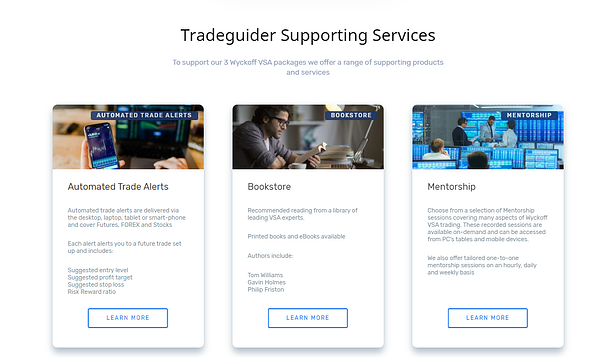 Support services page on new Tradeguider website | HubSpot CMS